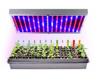 Фитолампы для рассады и растений