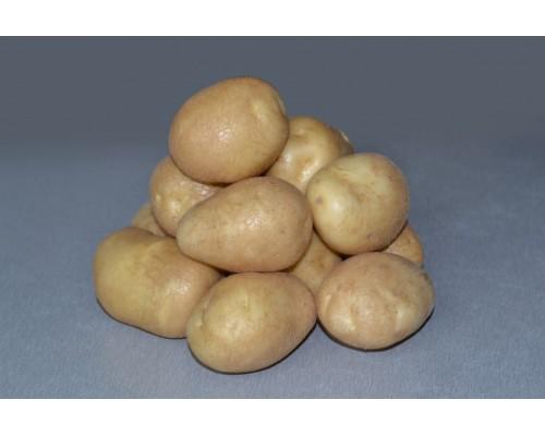 Картофель Удача (15 шт)